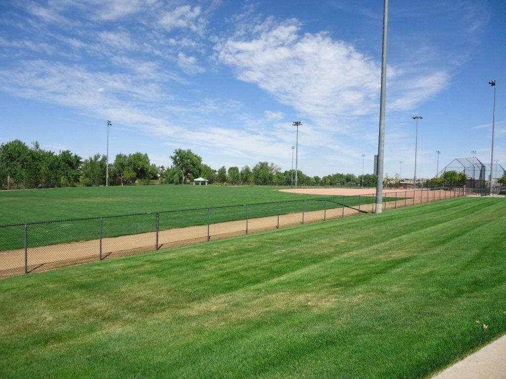 Softball Fields Outfield View