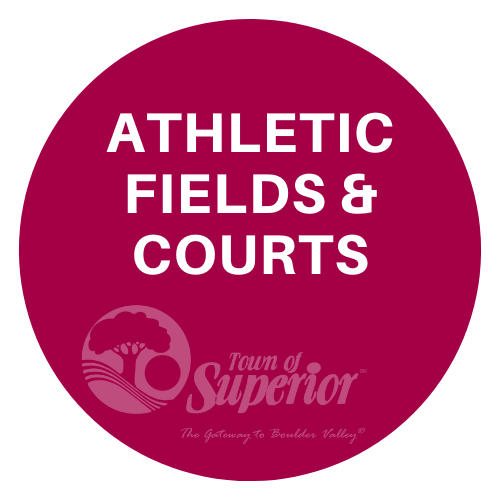 Link to Athletic Fields & Courts Information